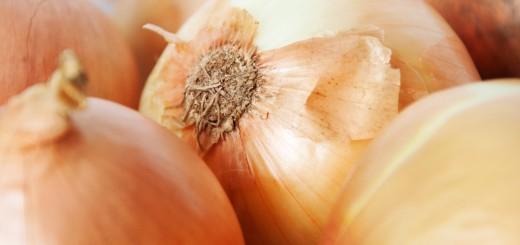 stockvault-onions131618